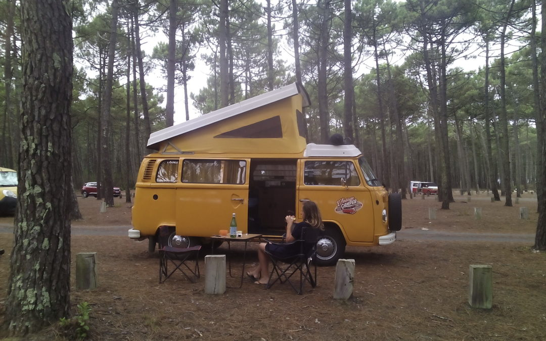 Moteur type IV bay window – Vintage Camper